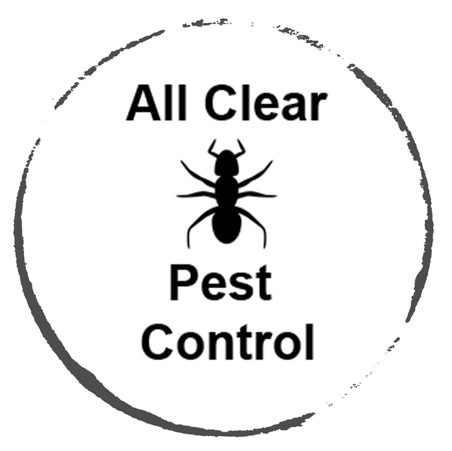 Pest Control Enfield & Tottenham with Tom Waugh